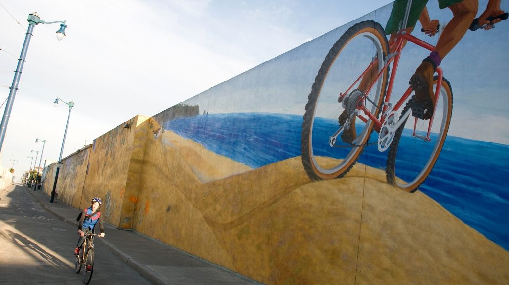 Duboce Bikeway Mural by Mona Caron
