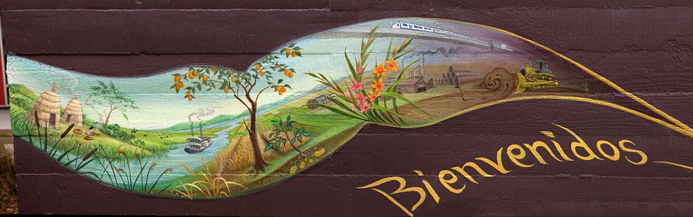 """The History of the Land - detail from """"Taking Root"""" by Mona Caron"""