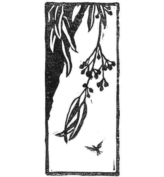 spot illustration