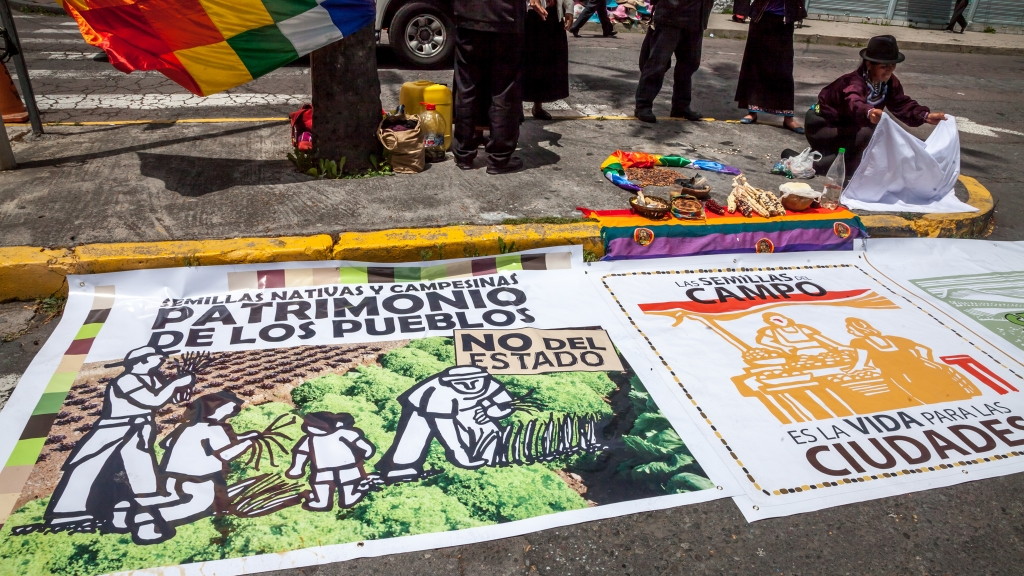 "Weekly protest against the ""Monsanto Law"" in front of the government bldg in Quito"