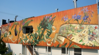 Noe Valley East Mural by Mona Caron